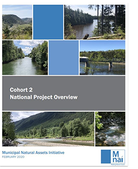 Cover of Cohort 2: National Project Overview.