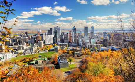 A Mountain view of Montreal City, Canada in the fall. The sky is clear and it is a sunny day.